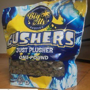 gusher