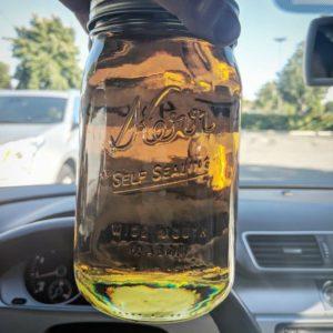 buy harlequin cbd oil