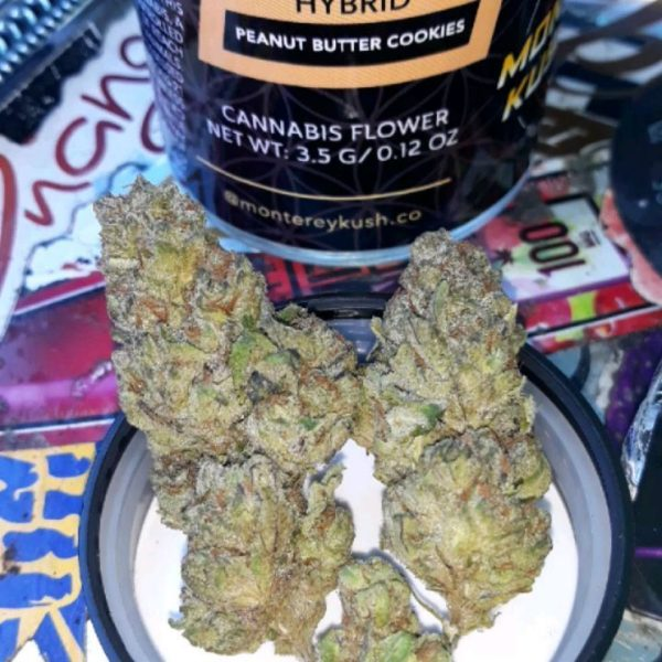 buy Peanut butter cup strain
