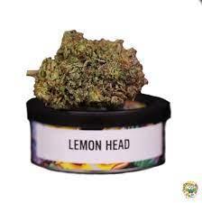 buy lemonhead strain