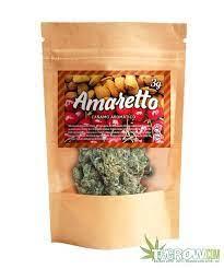 buy amaretto strain